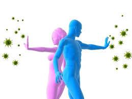 Ajutoare ale sistemului imunitar Image