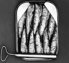 Sardine – beneficii pentru sanatate Image