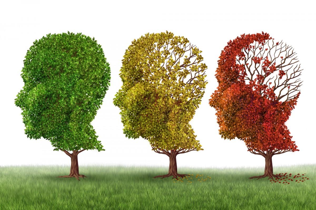 Alzheimer se transmite prin sange? Image