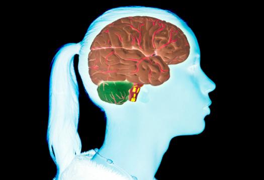 De ce adolescentii sunt mai predispusi la dependente? Image